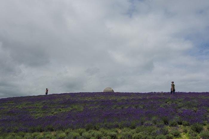 3 Buddha Hill